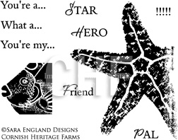 Emerging Star