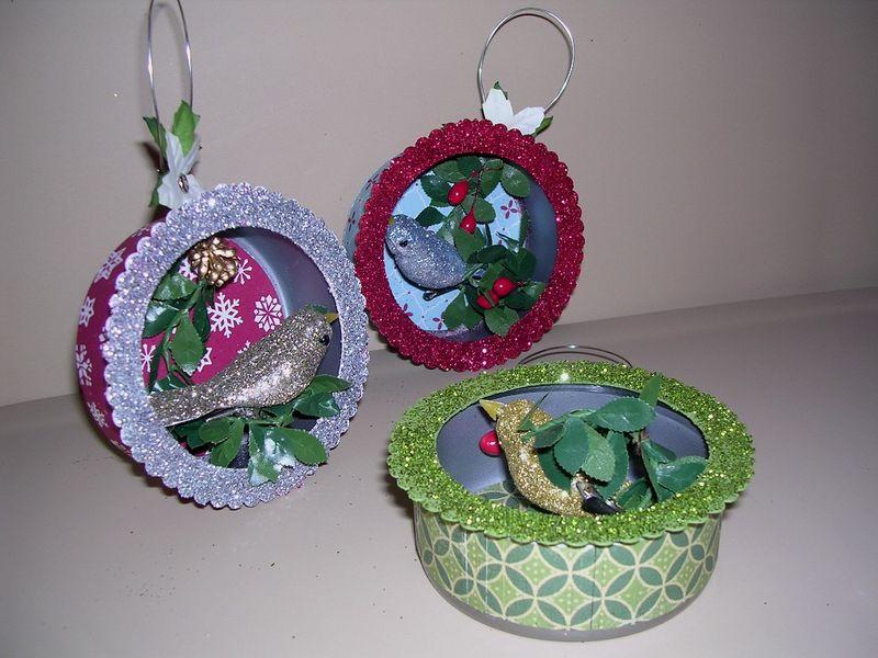 Bird Dioramas