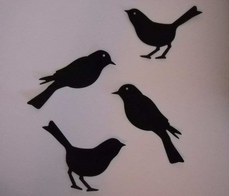 Cut birds