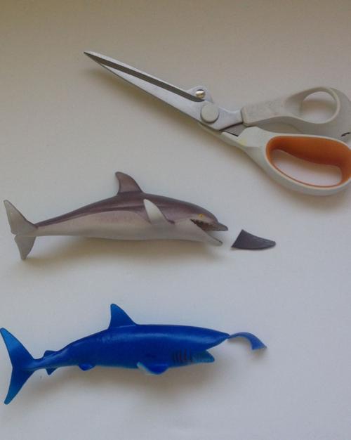 Fish plaques cut off fins